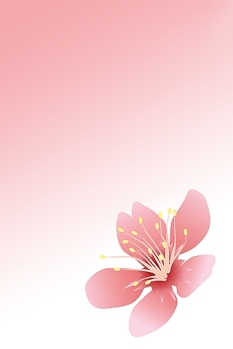 Blossom___iPhone_Wallpaper_by_bizzia